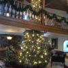 The magical tree at The Enzian in Leavenworth!